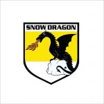 tracey road equipment snow dragon snow melters ice melters snow melter bodies